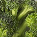 How to Kill Broccoli Smell