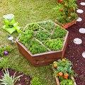 7 Raised Flower Bed Ideas to Take Your Garden to the Next Level