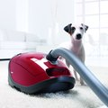 5 Reasons Why We're Totally Obsessed With Miele HomeCare Vacuums