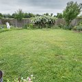 Tips on Reseeding a Lawn