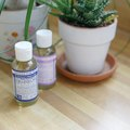 How to Use Dr. Bronners As Insecticidal Soap