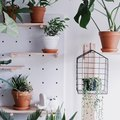 15 Unexpected Ways to Work a Pegboard In Your Home