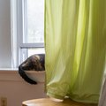 Creative Ways to Shorten Long Curtains