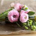 How to Preserve Flowers With Hairspray