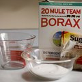 How to Kill Ants With Borax