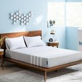 West Elm Has Introduced a New Mattress Startup to Its Stores
