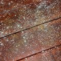 How To Clean Black Mold From Bathtub Grout Hunker