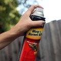 Homemade Wasp Spray