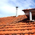 How to Remove Lichen From Roof Shingles