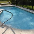 How to Get Rid of Water Mold in a Pool