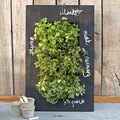 Food as Art? This Hanging Garden Makes a Strong Case for It