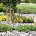 How to Put Landscaping Rocks Down