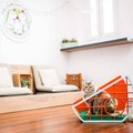 "Singapore's ""Nine Lives"" Design Show Is Making Cat Furnishings Chic"