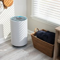 We Tested 7 Popular Air Purifiers — Here's What We Thought