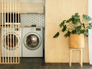 Washer and dryer, with plant in modern planter