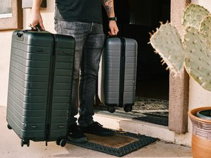 person holding two suitcases with plant nearby
