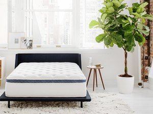 Minimal bedroom with bare mattress on navy bed frame
