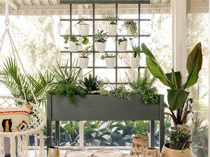 DIY living plant wall on boho patio with hammock