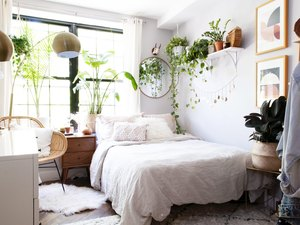 bedroom furniture ideas with greenery and shelving near woven accent chair
