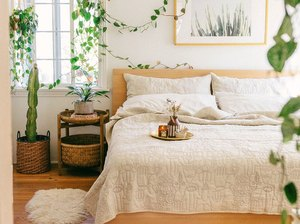 tropical bedroom idea with lush plants and artwork above bed