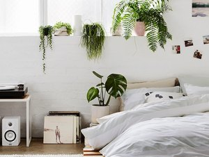 bohemian bedroom with plants and platform bed