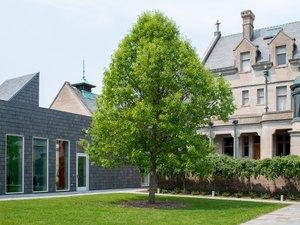 Neighborhood Watch: Whittier-Phillips, Minneapolis