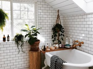 Bathroom with hanging and potted plants near clawfoot bathtub