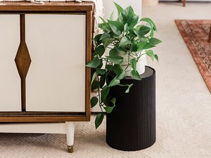 Black ribbed plant stand holding philodendron plant next to midcentury dresser