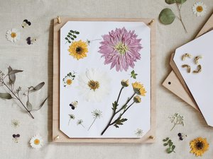 DIY flower press that's open with various pressed flowers on top