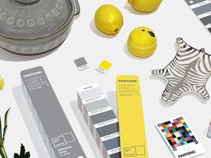 gray and yellow objects like flowers, color swatches, lemons and pot