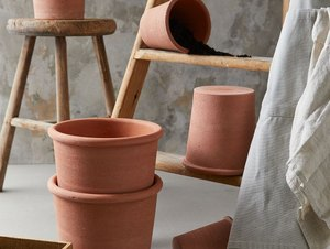 terracotta plant pots with ladder