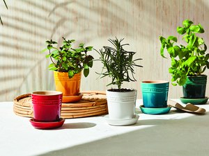 colorful stoneware herb planter pots