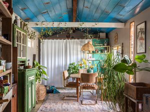 colorful room with blue ceiling and house plants