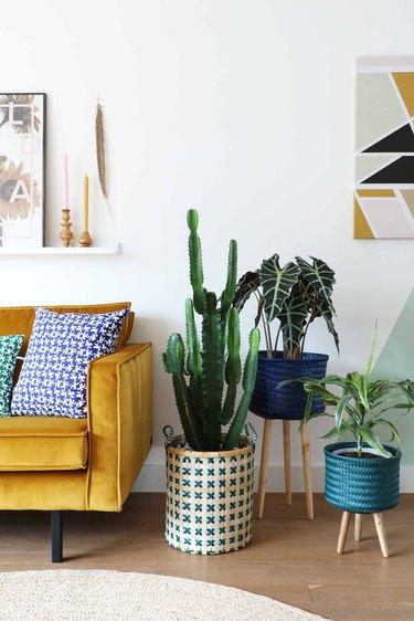 yellow velvet sofa in living room