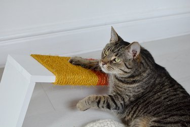 Finally, a DIY Cat Scratching Post That Actually Looks Cute