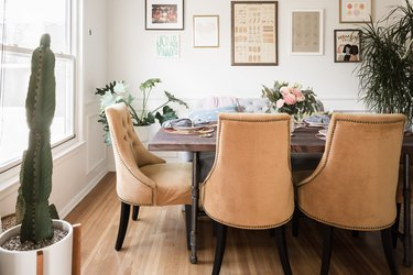Dining room with cactus plant, parlor palm plant, and suede dining chairs