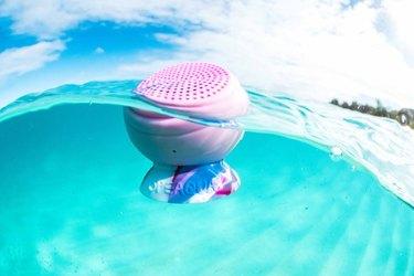 REI Speaqua Underwater Speaker