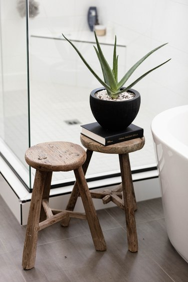 Aloe Vera plant in bathroom on wood stool