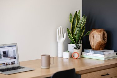 Home office desk with computer, snake plant, and desk accessories