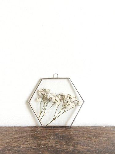 hexagon pressed flower frame