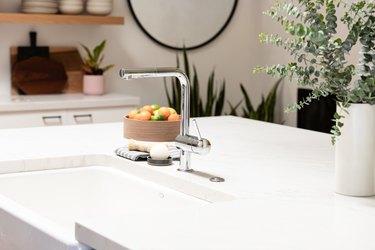 Kitchen counter, kitchen sink, plant, bowl of fruit