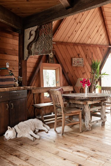 Dog resting on wood floor in geodesic dome