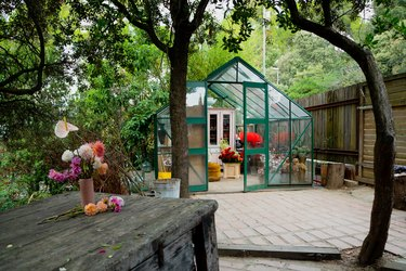 Greenhouse exterior surrounded by trees