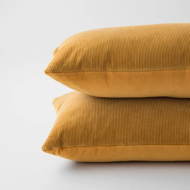 Schoolhouse Velvet Lumbar Pillow