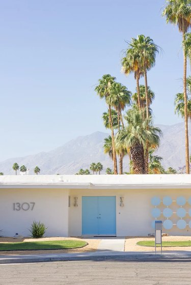 Blue midcentury modern front door with white exterior and palm trees
