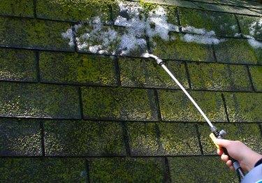 Spraying roof moss.