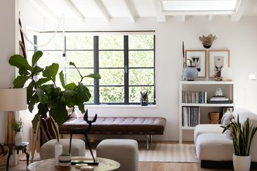 Fiddle leaf fig indoor plant idea in white modern living room