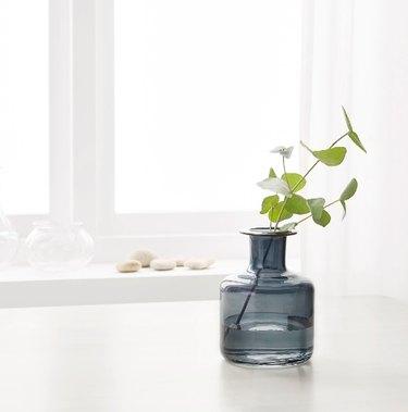 Pepparkorn Vase, $5.99