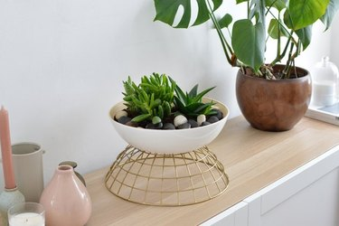 IKEA bowls made into a planter for plants.