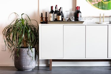 Ponytail Plant near credenza with bar items